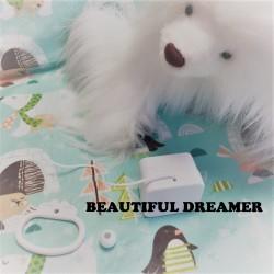 "Boîte à musique ""BEAUTIFUL DREAMER"" de S. FOSTER"