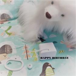 """Boîte à musique """"HAPPY BIRTHDAY"""""""