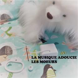 """Boîte à musique """"LA MUSIQUE ADOUCIT LES MOEURS"""""""
