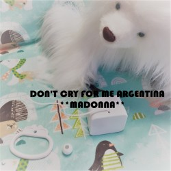 """Boîte à musique """"DON'T CRY FOR ME ARGENTINA""""- MADONNA"""