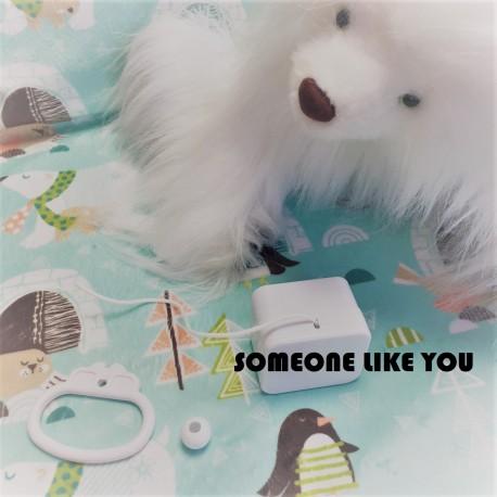 """Boîte à musique """"SOMEONE LIKE YOU""""- Adèle"""