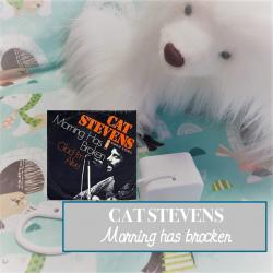 "Boîte à musique ""MORNING HAS BROKEN"" - Cat Stevens"